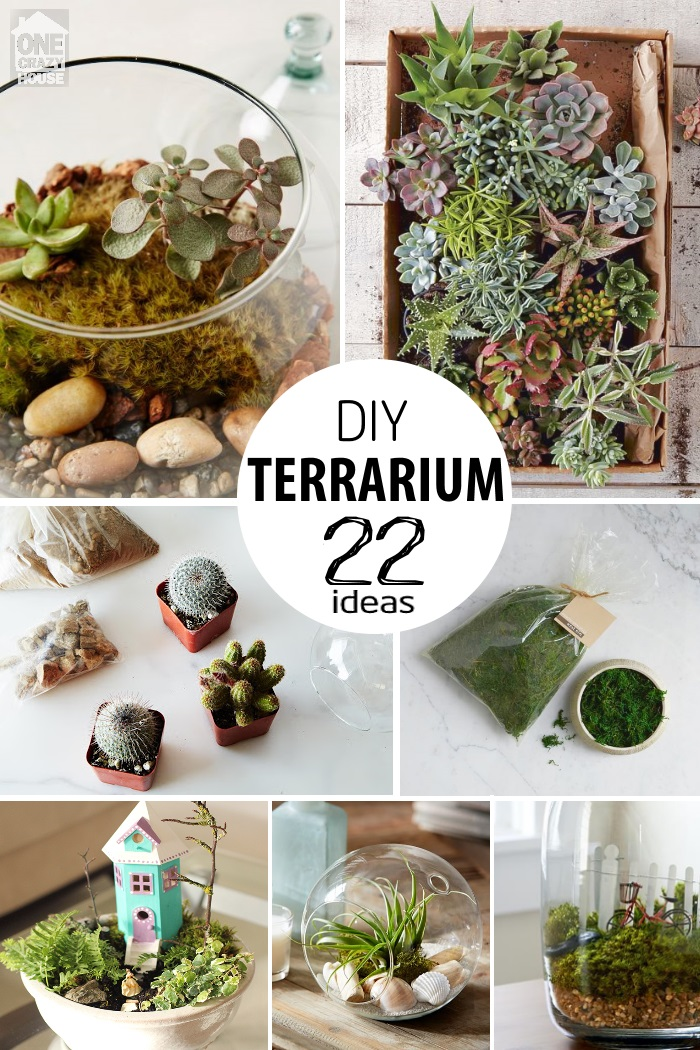 22 ways to make a terrarium. Black Bedroom Furniture Sets. Home Design Ideas