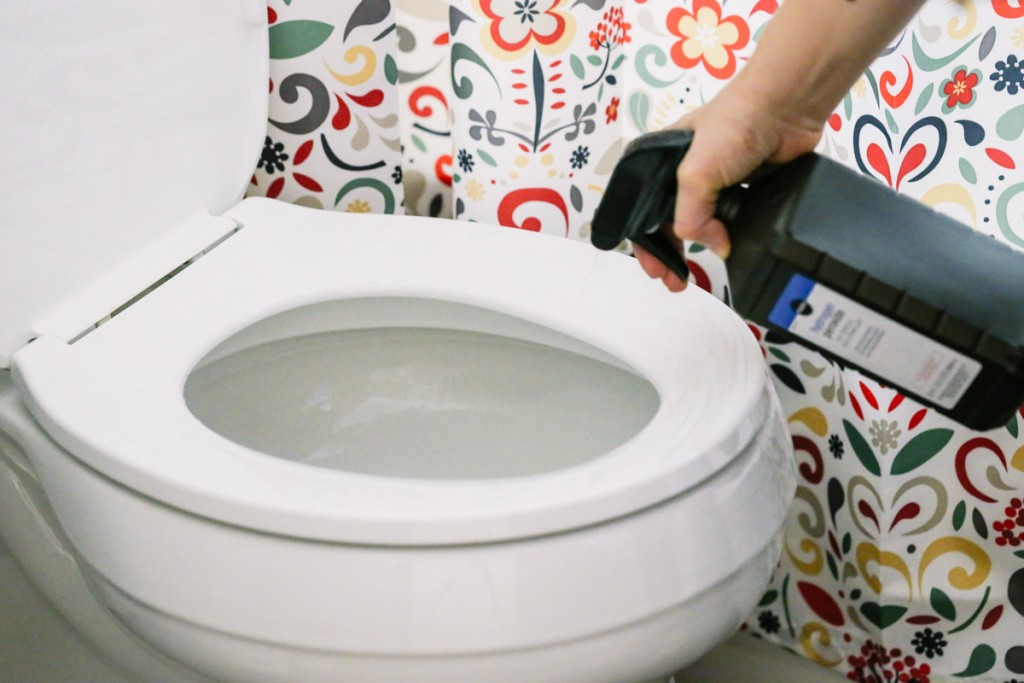 toilet cleaning tips 1