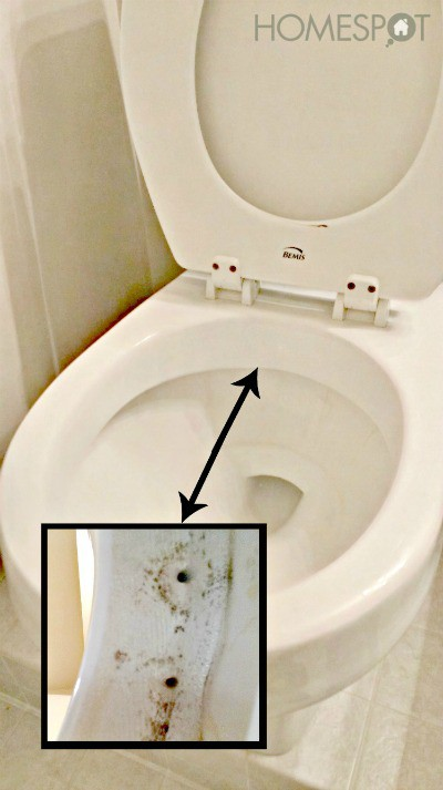 toilet cleaning tips 8