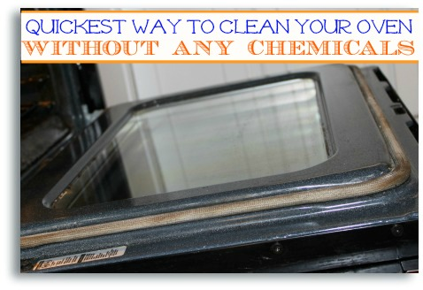 how to clean your oven 8