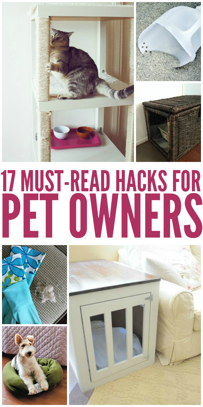 Pets and their owners will love these tips and tricks that make life for pet owners 100% better.