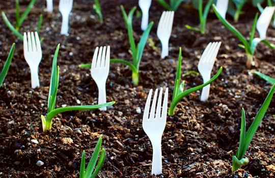 garden tricks 11