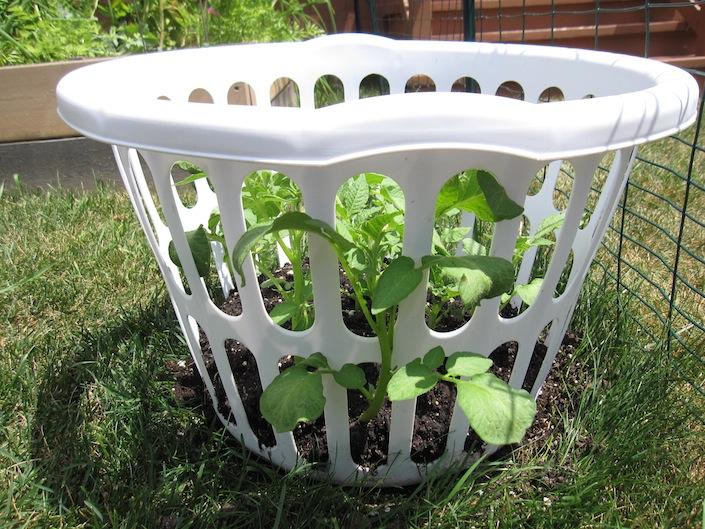 laundry basket ideas 2