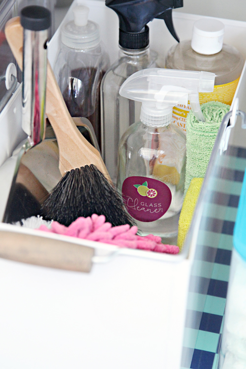 cleaning supplies organization 13