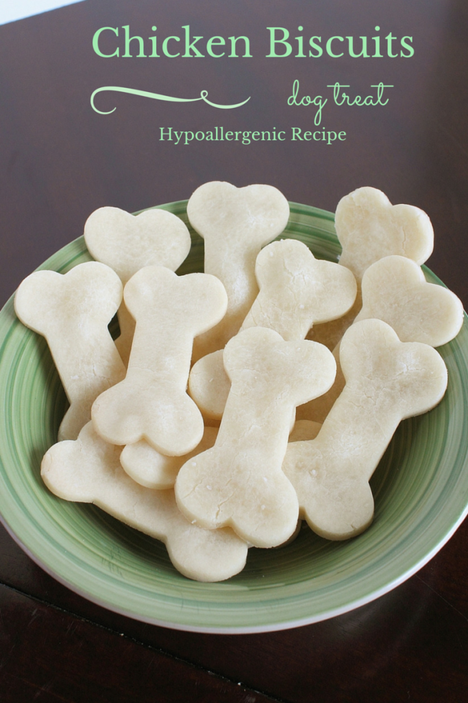 15 diy dog treats to pamper your pooch