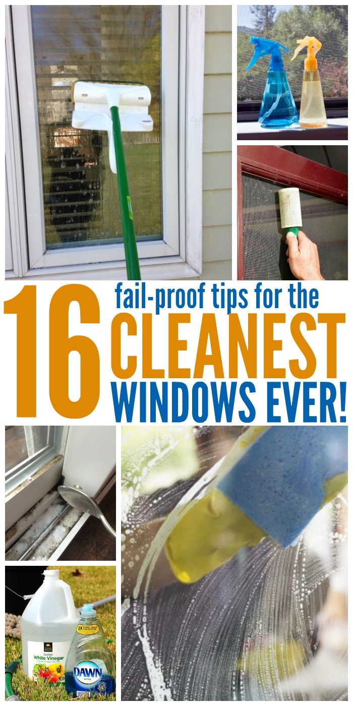 16 Tips for the Cleanest Windows EVER picture collage cleaning a window with a sponge mop, spray bottles with DIY window cleaning solution, lint cleaner used on a window screen, cleaning window sills with soda and vineger, materials for DIY cleaning solution vinegar and Dawn dish washing liquid, person washing windows with a sponge