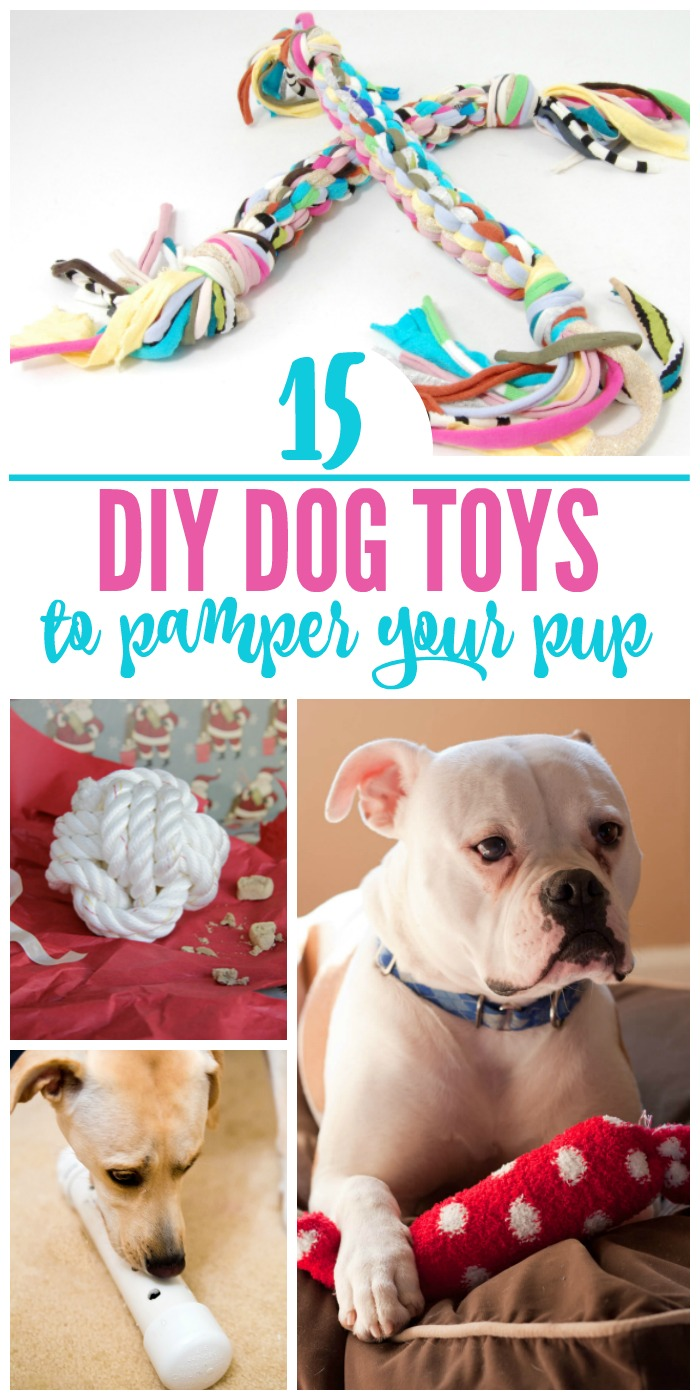 15 DIY Dog Toys Even the Pickiest Pups Will Love