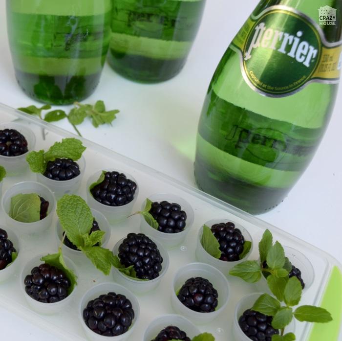 blackberry mojito cubes