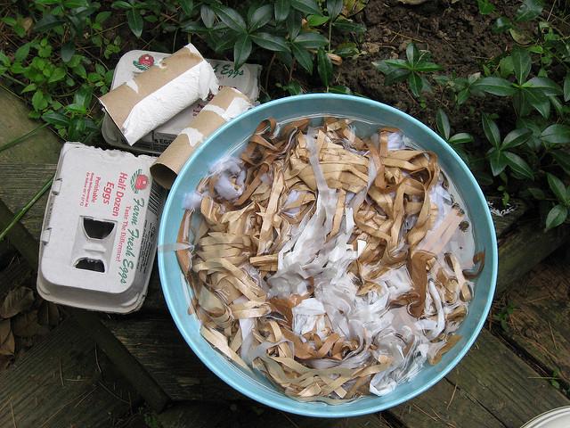 composting-egg-cartons
