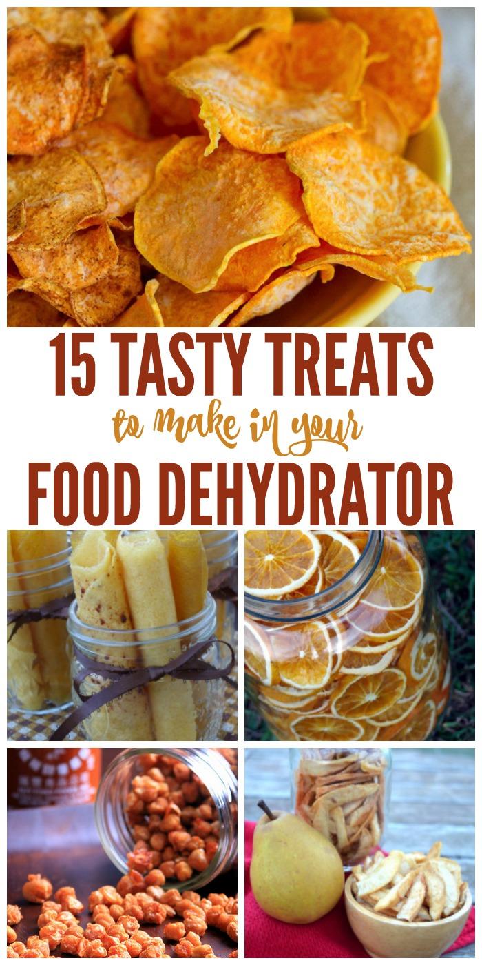 Food Dehydrator Ideas Recipes