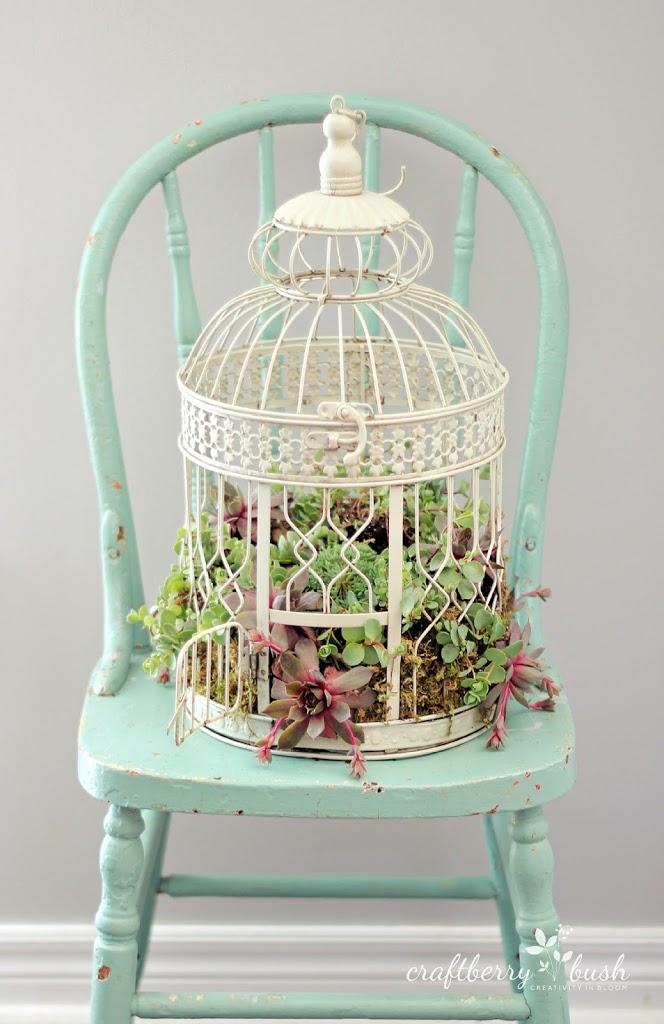birdcage-succulent-arrangement