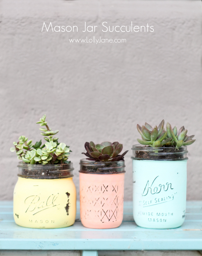 mason-jar-planters