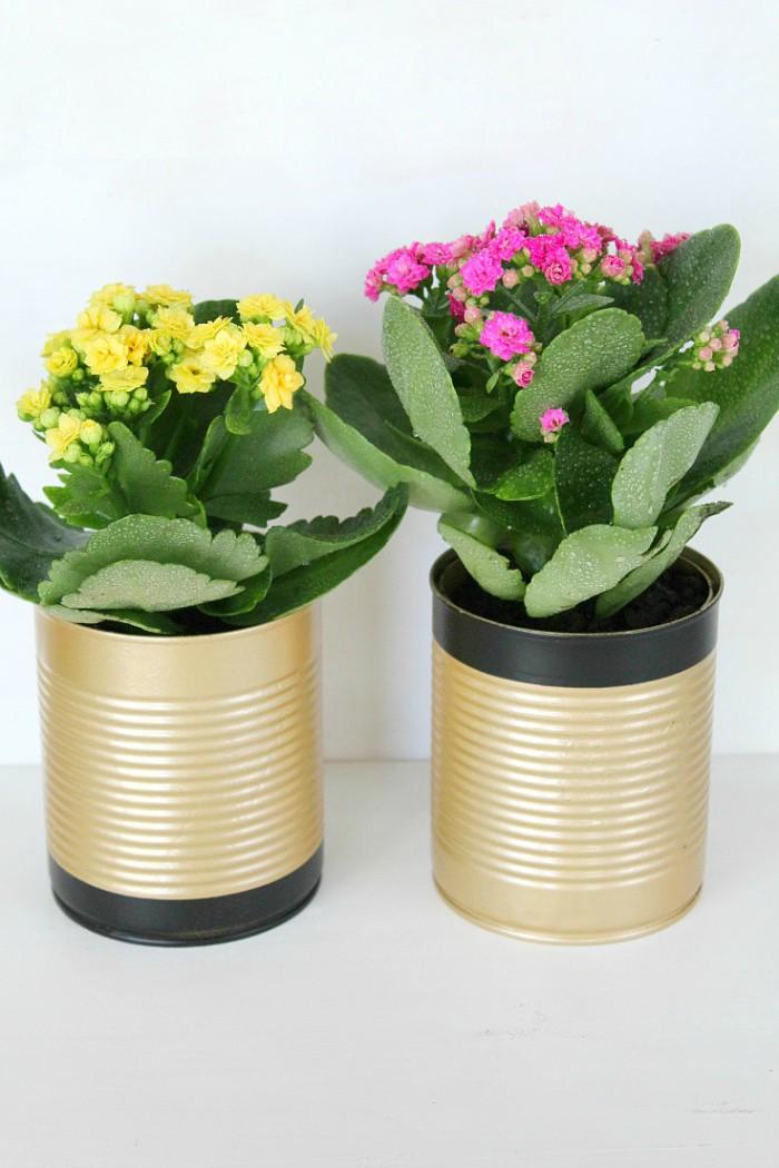 Can You Paint Plastic Flower Pots