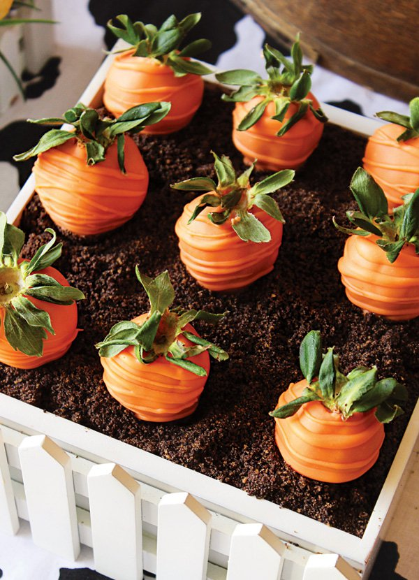 Carrots With Chocolate Cake
