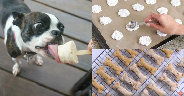 15+ Homemade Dog Treats to Spoil Your Furbaby