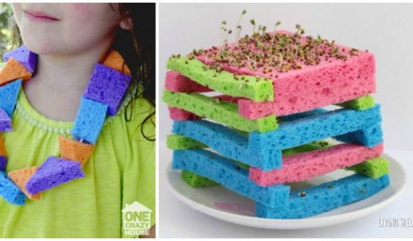 12 Unique Ways to Use Sponges Besides Cleaning