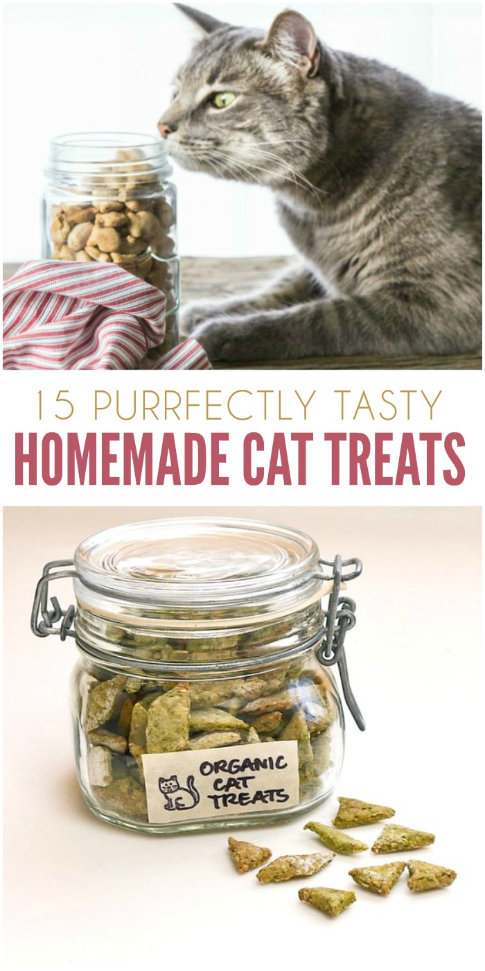 15 Purrfectly Tasty Homemade Treats even the finickiest of cats will love
