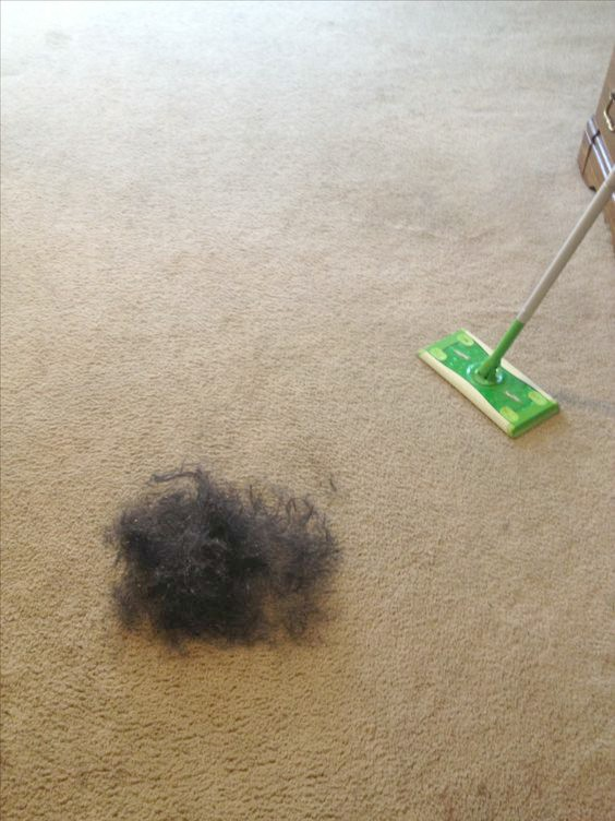 swiffer for pet hair removal