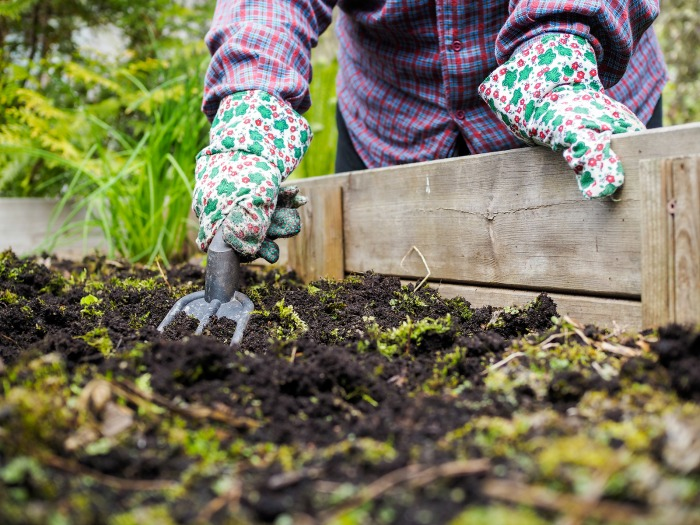 Fall Gardening Tips How To Prepare For Winter