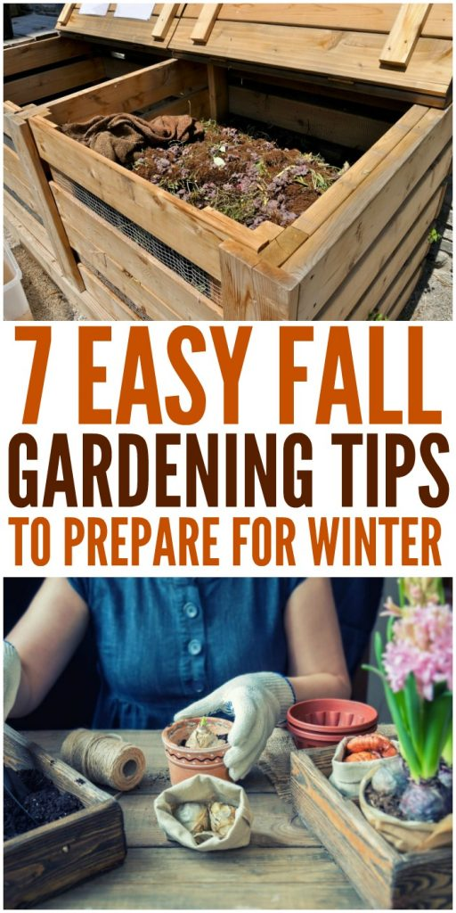 7 Simple Fall Gardening Tips to Prepare for Winter