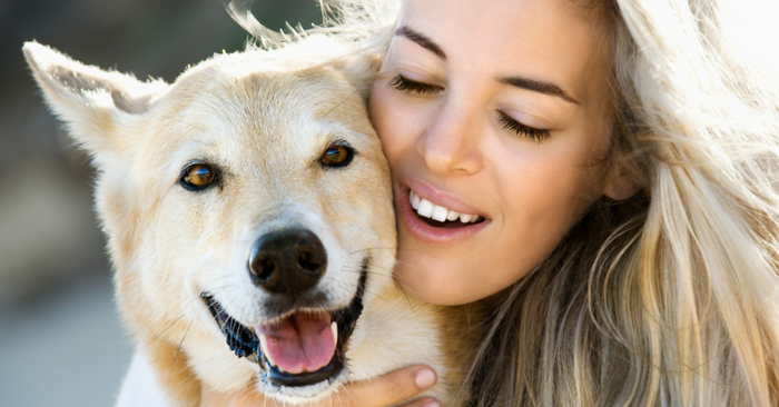 10 Simple Ways to Pamper Your Pet To Make Them Feel Special