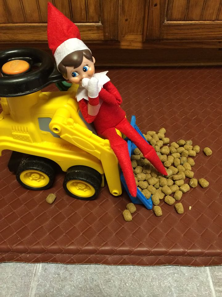 Elf On The Shelf in a construction vehicle