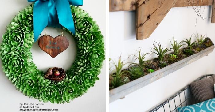 15+ Succulent Crafts to Make ASAP