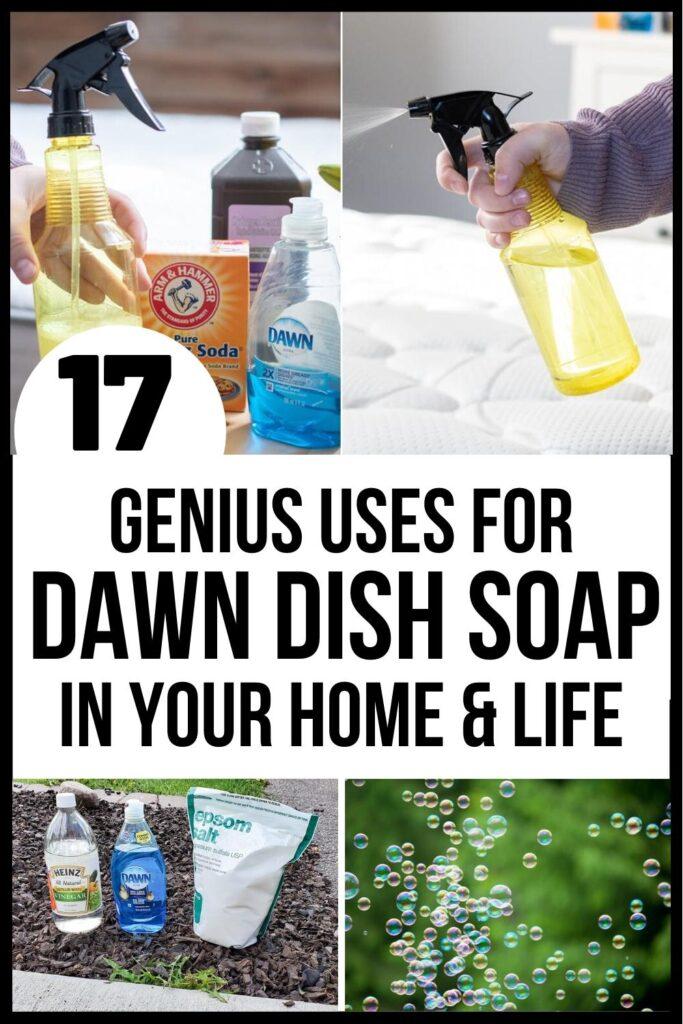 Dawn Soap Uses Pin image A