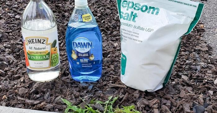 17 Genius Uses for Dawn Dish Soap Every Mom Needs