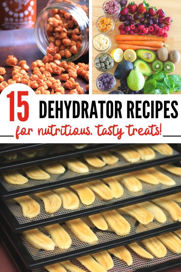 dried fruit and other dehydrator recipes Pin image B