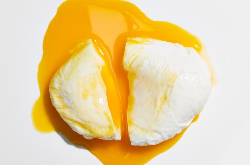 poached egg on white background