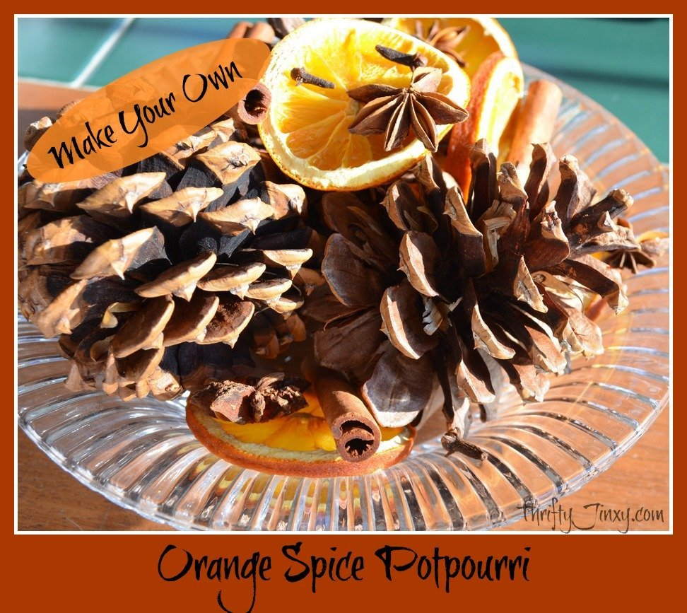 orange spice potpourri graphic