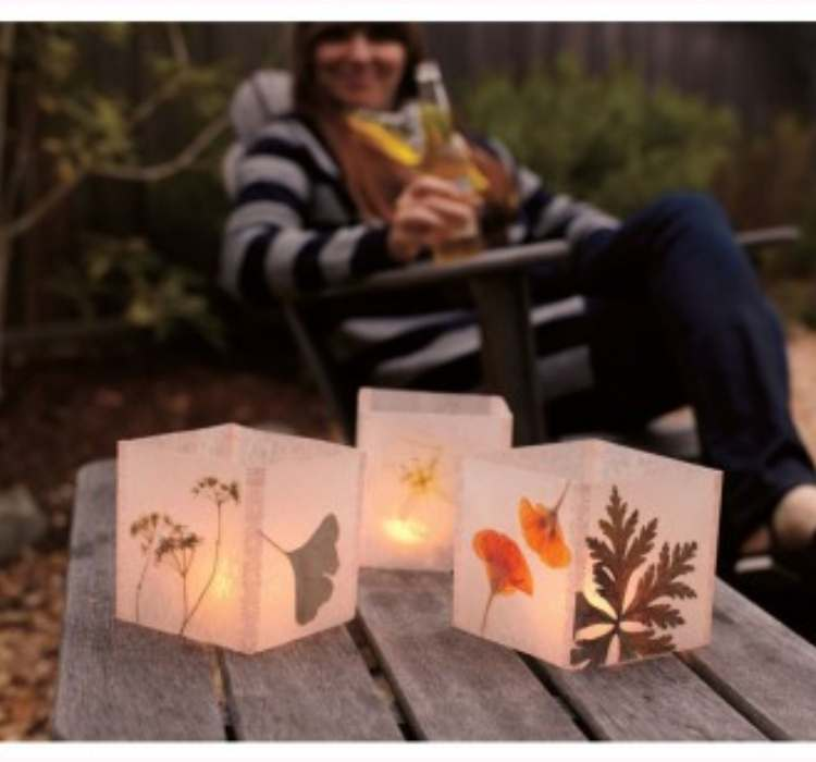 Picture of Wax Paper Luminaries