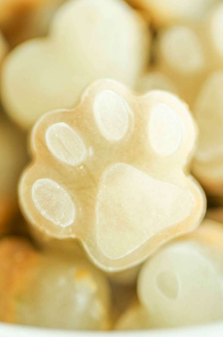 Closeup of frozen dog treat in shape of a paw print.