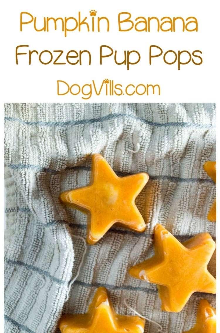 Star shaped pumpkin and banana frozen dog treats on cloth background