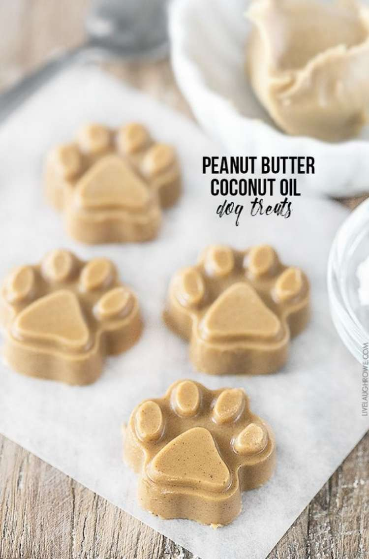Pawprint shapes peanut butter and coconut oil dog treats on napkin with peanut butter scoop in bowl in background all on a wooden surface