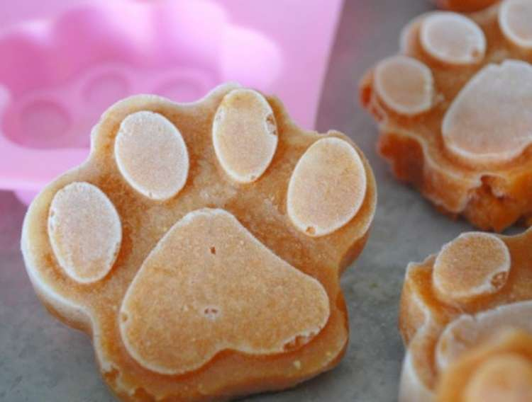 Frozen dog treats in shape of a paw resting on the mold used to create paw shape.