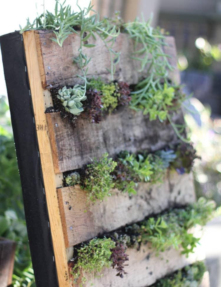 Backyard DIY Ideas - pallet vertical garden