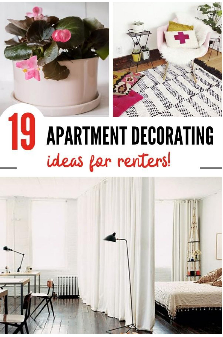 collage of apartment decorating ideas. A picture of a divider in a studio creating Bedroom and creating a living room.  A picture of a plant adding color to a space. A picture of a floor rug next to a bed adding diversity of texture to the decor.