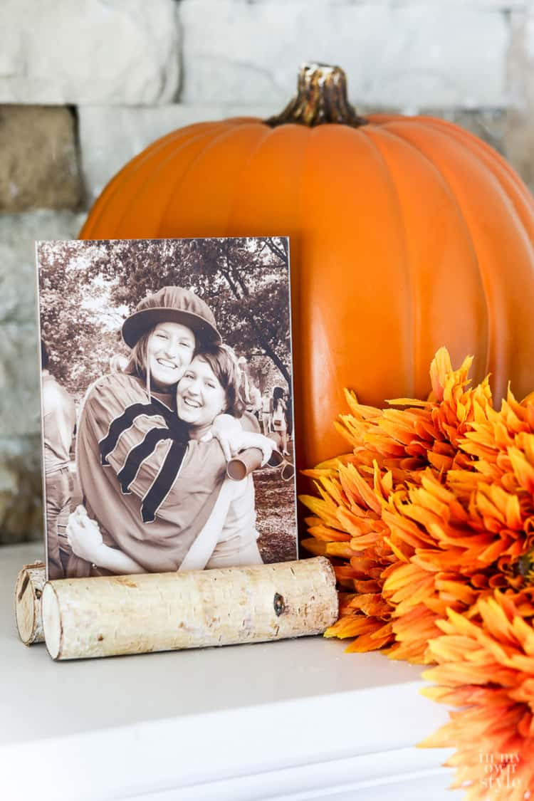 Create a beautiful photo from from birch logs and a frame from the Dollar Store