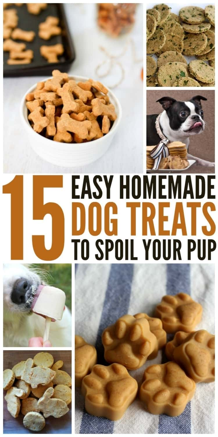 15 Easy Homemade Dog Treats To Spoil Your Pup