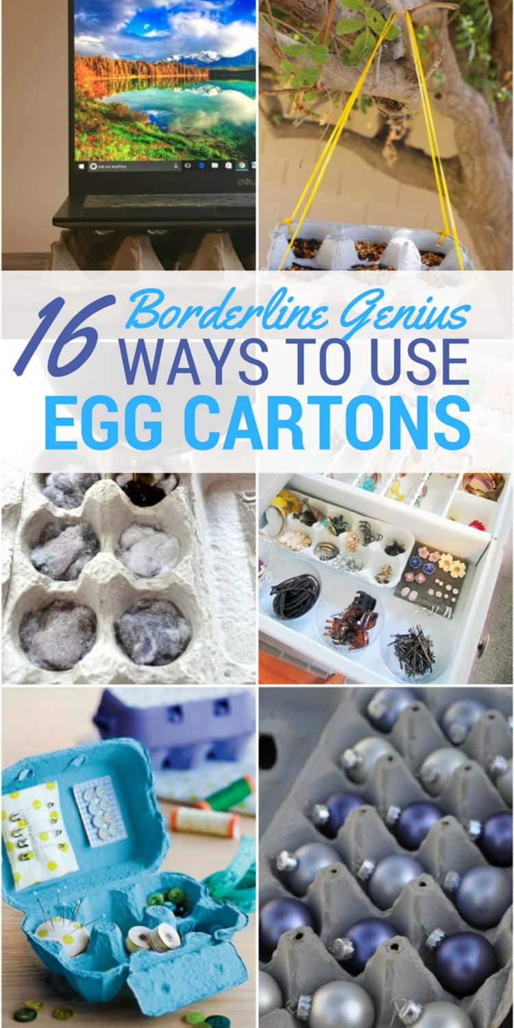 6-photo collage of ways to use egg cartons - a laptop placed on egg carton, egg carton in use as a hanging bird feeder, egg carton stuffed with dryer lint and wax for use as a fire starter, as a jewelry organizer, as a sewing kit, and as storage for Christmas ornaments.