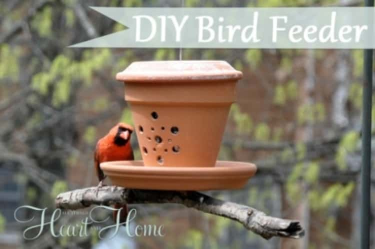 DIY bird feeder made from a flower pot perched on a tree branch with a bird feeding