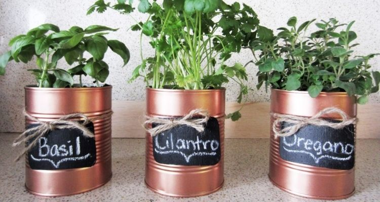 tin can herb planters
