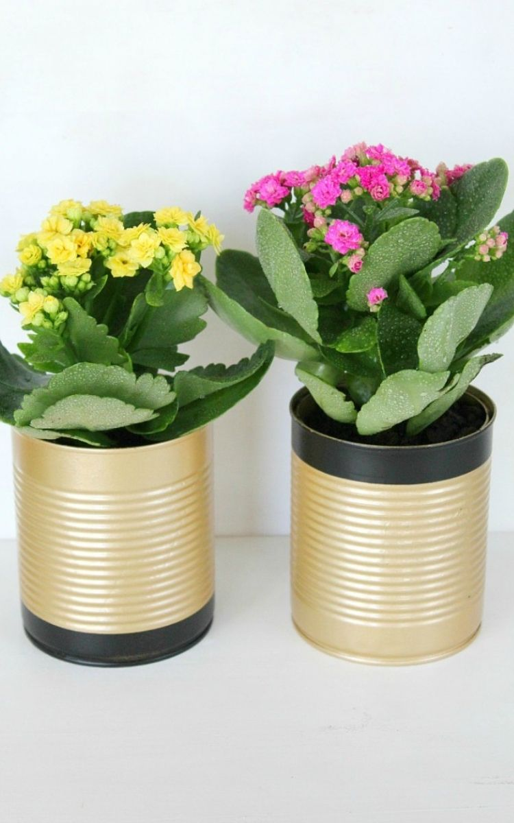 Gold spray painted cans for flower pots