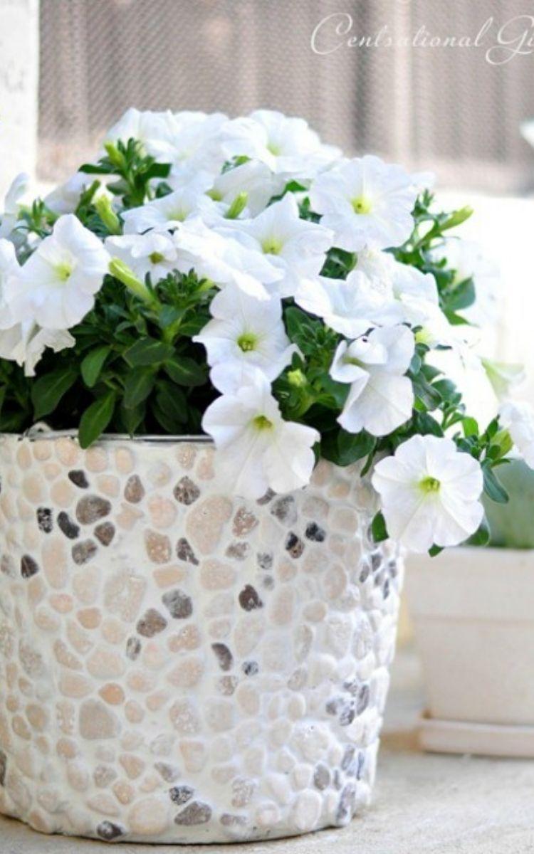 Rock covered bucket flower pot
