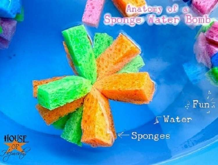 OneCrazyHouse Stay Cool without a pool Ball made from strips of spanges tie together in middle in water
