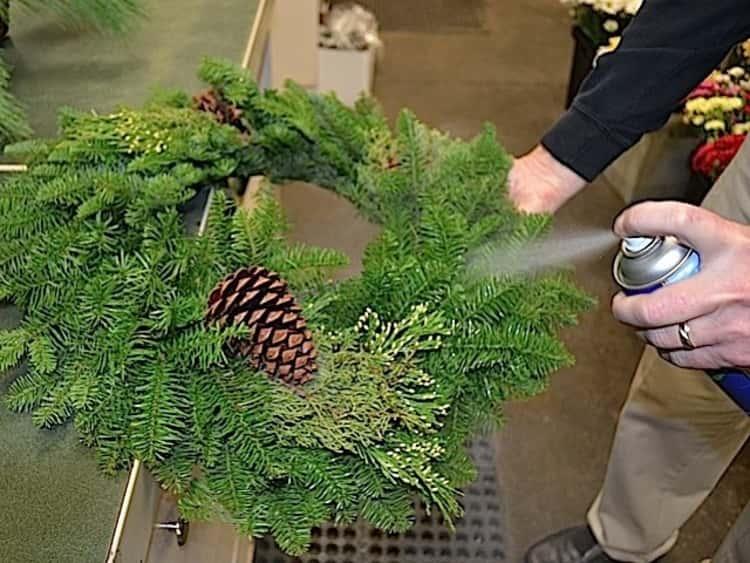 Preserving Christmas wreaths using hairspray hack