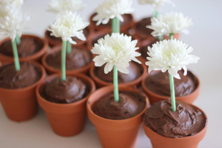 Cupcakes baked in small terra-cotta pots and decorated using real flowers!