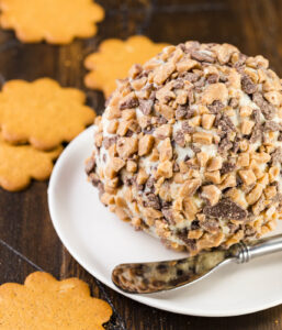 Chocolate chip cheese ball on a small round plate.